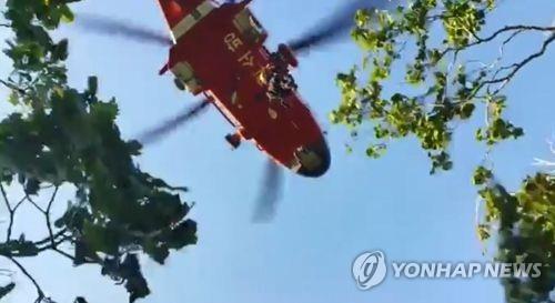 대구 청룡산서 벌목작업 중 나무에 깔린 60대…헬기로 구조