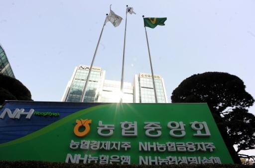 농협금융, 작년 당기순이익 1조7,796억원…사상최대