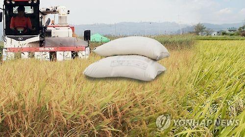 내일부터 '마지막' 작년산 쌀 변동직불금 지급
