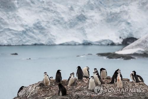 뜨거워지는 지구…남극대륙서 사상 최초로 영상 20도 기록