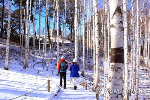 [날씨] 일요일 오전 동해안 곳곳 눈…미세먼지 '좋음'∼'보통'