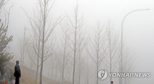 """강원 내륙·산지 짙은 안개…""""출근길 운전 조심하세요"""""""