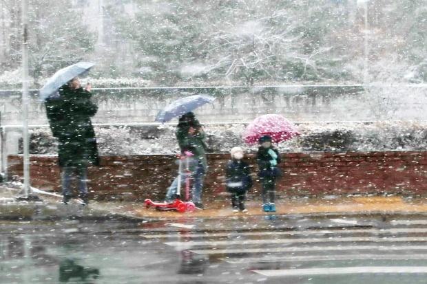 대설주의보가 내려진 16일 오후 서울 시내. 시민들이 눈을 맞으며 횡단보도 신호를 기다리고 있다. /사진=연합뉴스