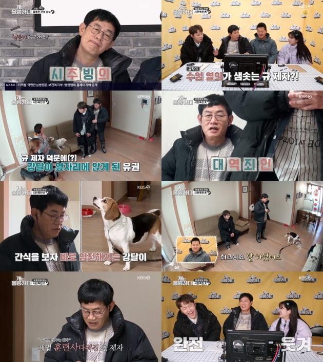 '개는 훌륭하다' / 사진제공=KBS2