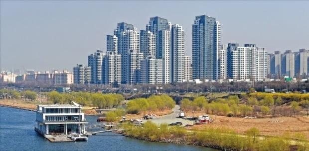 한강변에 있는 서울 반포동 한 단지 모습.  /한경DB