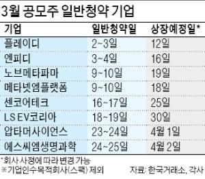 IPO 시장에 봄바람 부나…엔피디·플레이디 등 9곳 상장 행렬