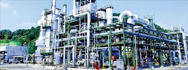 울산 석유화학공단에 있는 카프로 황산공장. 카프로 제공