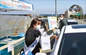 포항시는 지난 15일 구룡포 해수욕장 일대에서 강도다리 활어회 '드라이브 스루' 소비 촉진 행사를 열었다.  포항시 제공