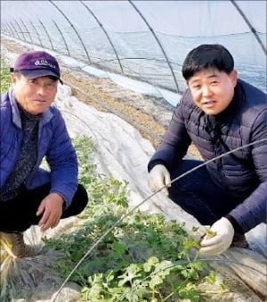 30년 종자 전문가, 농산물 가공에 뛰어든 까닭