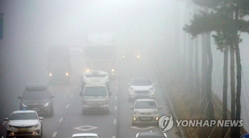 대전·충남·세종 짙은 안개 속 봄 날씨…논산 가시거리 70m