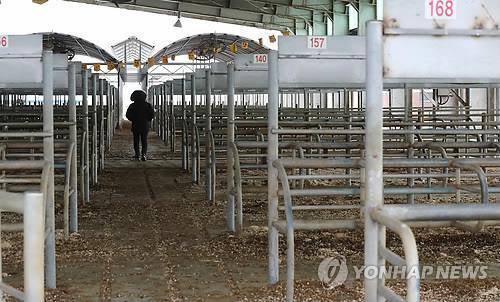 '코로나19 확산 방지'… 전남 가축시장 15곳 전면 휴장
