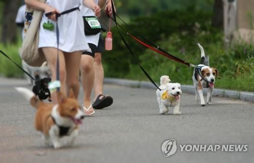 강원도 반려동물지원센터 문화·관광도시 강릉에 건립 확정
