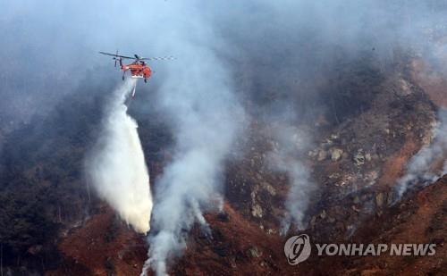 강원 영월서 산불 2시간만 진화…0.1ha 소실 추정(종합)
