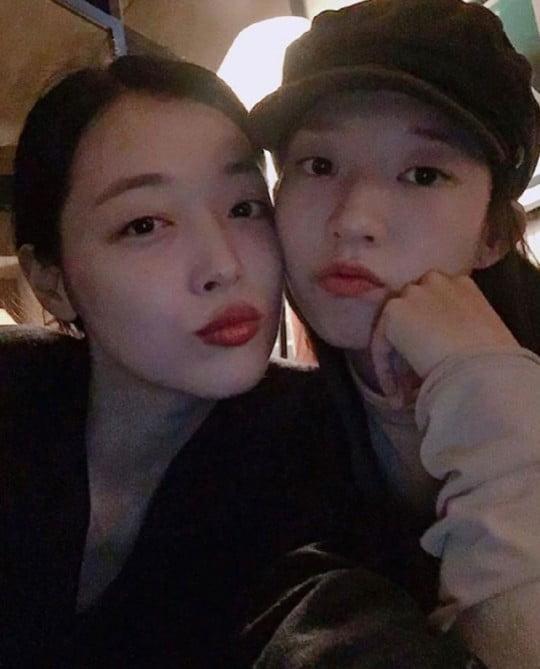 김선아, 설리 고양이 입양 /사진=인스타그램