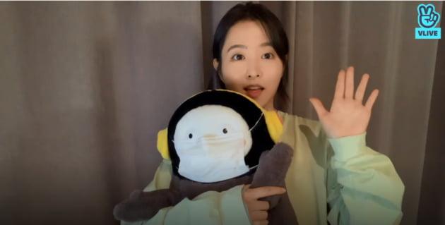 박보영 V라이브 갈무리