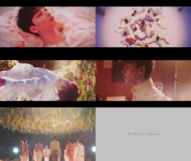 세븐틴 '마이오치루하나비라 (Fallin' Flower)' 티저 / 사진제공= 플레디스엔터테인먼트