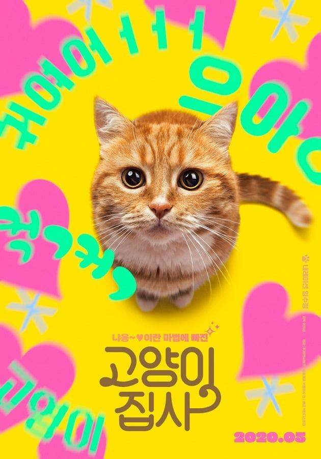 다큐멘터리 영화 '고양이 집사' 티저 포스터 / 사진제공=엠앤씨에프
