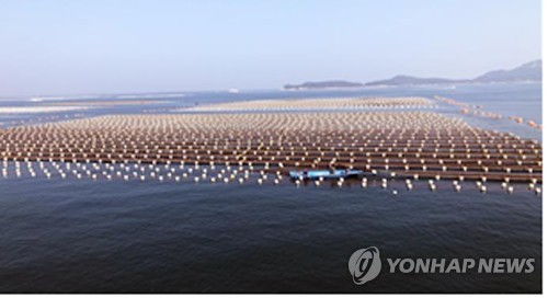 돈 안 되는 어류양식…작년 어류생산 5.8%↑·생산금액은 12%↓