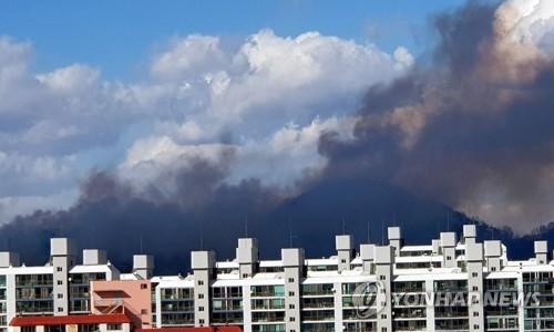 강풍 특보에 전국 곳곳에서 산불…산림 당국 '초비상'