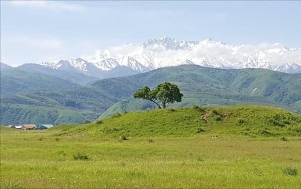 카자흐스탄 톈산산맥 서쪽 끝자락인 이식고분군(튀르크계 고분) 모습. 적석목곽분 등 내부 무덤 양식을 비롯해 말 장식, 황금 제품 등의 유물이 5세기 전후 신라 고분과 관련이 깊다.