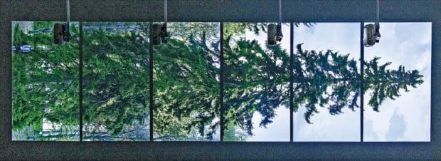 국립현대미술관 서울관에 설치된 에이샤-리사 아틸라의 '수평-바카수오라'.  국립현대미술관 제공