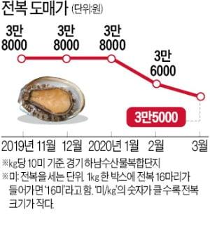 귀한 몸 '전복의 눈물'…1년새 반값으로 폭락