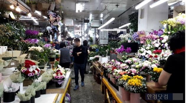 11일 서울 남대문 꽃시장을 찾은 소비자가 진열대를 둘러보고 있다./사진=이미경 기자