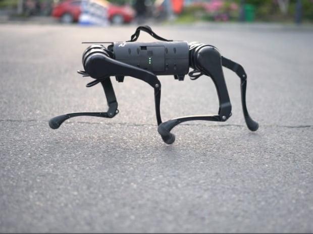 유니트리 4족 로봇 A1. /유니트리 제공