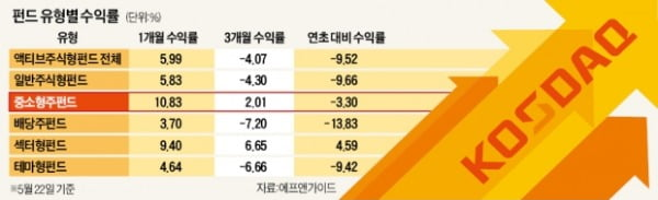 코스닥 랠리에 중소형株 펀드 '기지개'