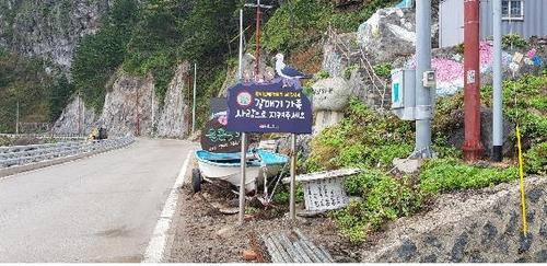 울릉도에 전국에서 첫 갈매기 보호 도로표지판 설치
