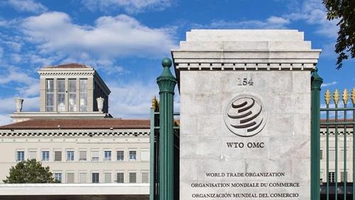 """WTO """"6월 8일부터 차기 사무총장 후보 접수"""""""