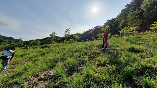 """한국인 77% """"올해는 국내 여행, 시골로 떠난다"""""""