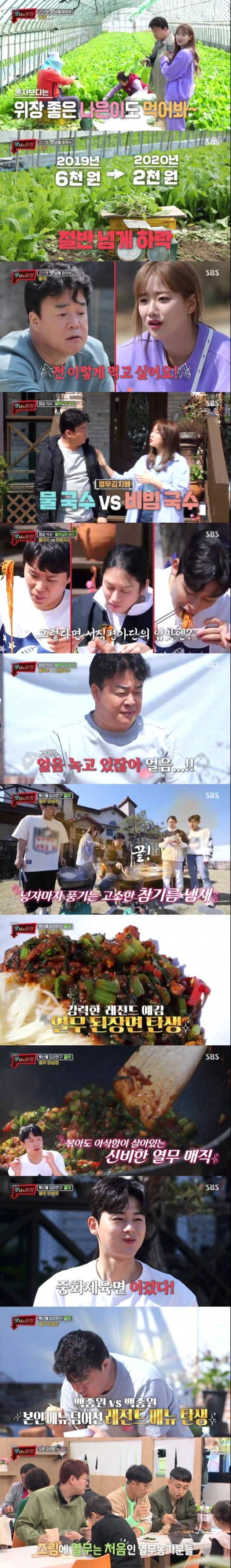 '맛남의 광장' 열무 농가 편 / 사진제공=SBS