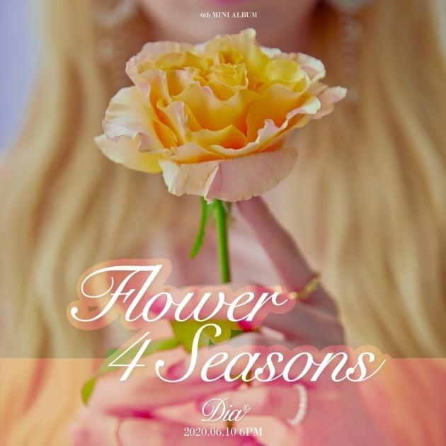 다이아 미니 6집 'Flower 4 seasons' 로고 이미지./ 사진제공=포켓돌스튜디오