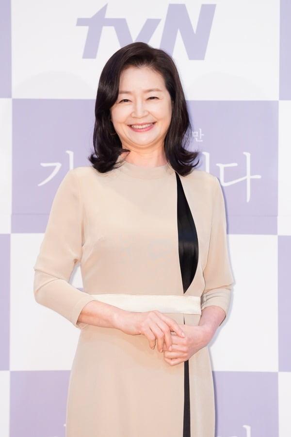 배우 원미경./사진제공=tvN