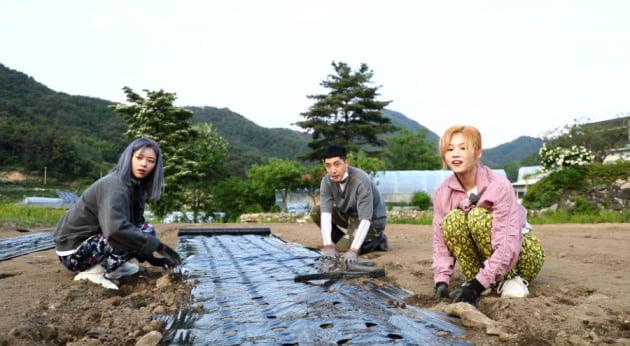 '6시 내고향' 트와이스/사진=KBS