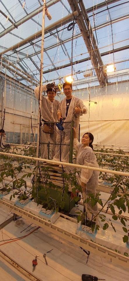 디지로그 팀이 네덜란드 바헤닝언 농장에 센서와 카메라를 설치하고 있다.