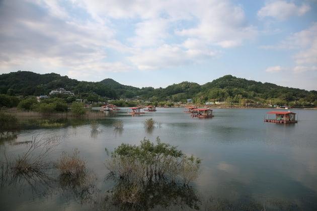 충남예산 느린호수길 평촌삼거리로 가는 느린호수길에서의 풍경