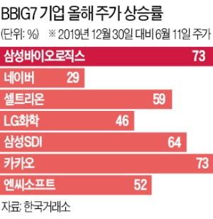 미국에 FANG 있다면 한국엔 BBIG 있다