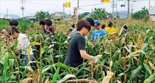 두루미평화마을, 환경부가 꼽은 청정지역…쌀 재배·병영 체험 재미