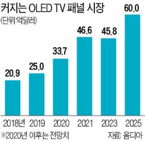 TV용 OLED 한국 독주 막으려는 몸부림…中·日 뭉쳤다