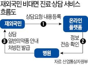 해외 주재원·유학생 원격진료…국내 병원서 처방전 발급