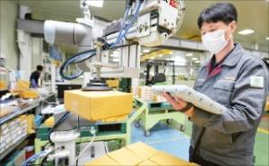 충북 제천에 있는 박원 공장에서 한 근로자가 KT가 만든 '코봇'과 함께 작업하고 있다.  KT 제공