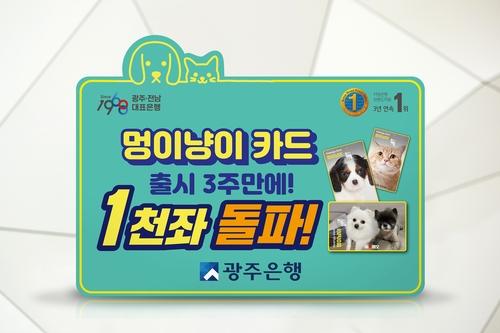 """광주은행 멍이냥이카드 출시 3주 1천계좌…""""반응 좋아요"""""""