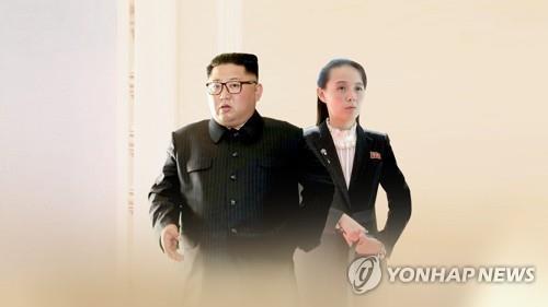 """주북 러시아 대사 """"김정은 위원장 와병설은 근거없는 소문"""""""