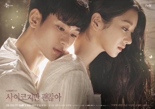 '사이코지만 괜찮아' 캐릭터 포스터'./ 사진제공=tvN