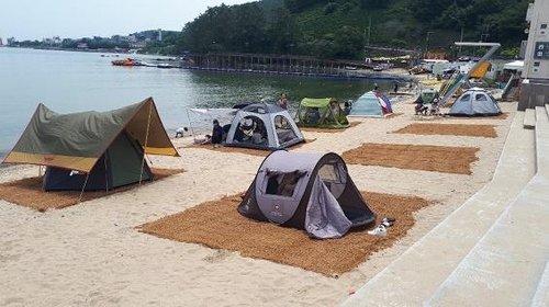 """""""텐트 없어서 못 팔아요""""…코로나19에 올 피서는 캠핑이 대세"""