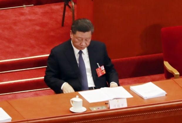 시진핑 중국 국가주석./사진=연합뉴스