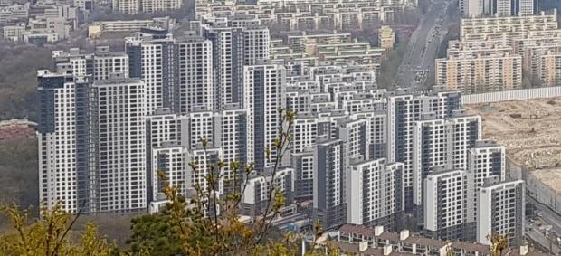 청약통장 없이 살 수 있는 보류지의 인기가 높아지고 있다. 최근 보류지 분양을 한 서울 개포동 래미안포레스트.  /한경DB