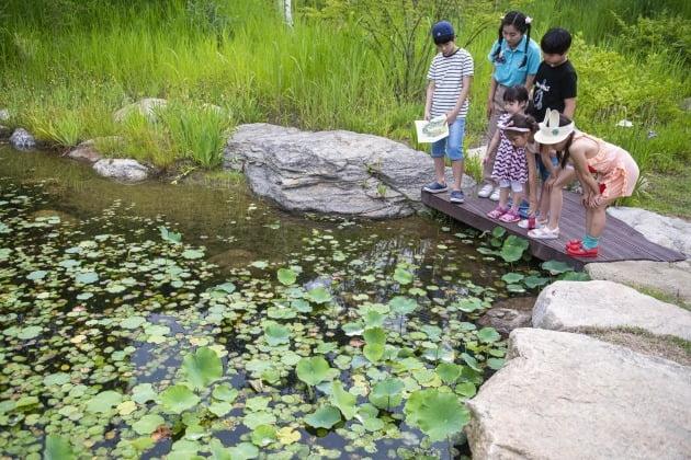 에버랜드 포레스트 캠프에서 자연학습을 하고 있는 어린이들